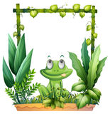 A frog thinking Stock Image