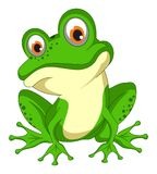 Frog toad vector eps isolated background Royalty Free Stock Photo