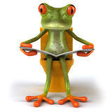 Frog and toilets Royalty Free Stock Photo
