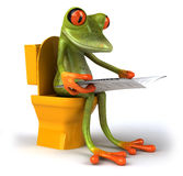 Frog and toilets Royalty Free Stock Photography