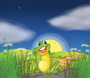 A frog at the top of the hill. Illustration of a frog at the top of the hill Stock Photography