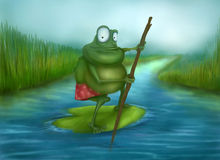 Frog traveler Royalty Free Stock Photography