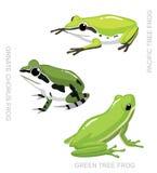 Frog Tree Frog Set Cartoon Vector Illustration Stock Photos