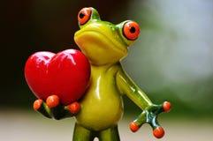 Frog, Tree Frog, Vertebrate, Amphibian stock image