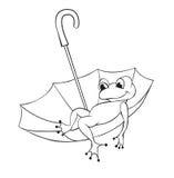 Frog and umbrella Stock Photos