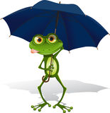 Frog and umbrella. Illustration, green frog with blue umbrella on white background Royalty Free Stock Photography