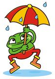 Frog and umbrella Stock Photo
