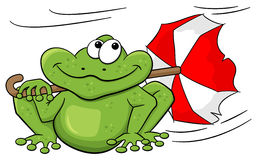 Frog with umbrella sitting in storm Royalty Free Stock Image