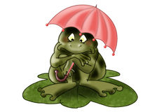 Frog under umbrella. Green frog sitting on a sheet of water under an umbrella Stock Image