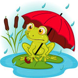 Frog under umbrella stock illustration