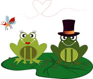 Frog valentine Stock Photography