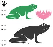 Frog. Vector illustration (EPS 10 Royalty Free Stock Images