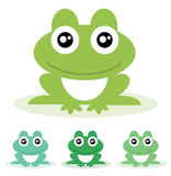 Frog. Vector illustration. Frog isolated on white background. Vector illustration Royalty Free Stock Photos