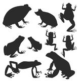 Frog vector silhouette cartoon tropical wildlife animal green froggy nature funny illustration toxic toad amphibian. Stock Illustration