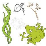 Frog Vine Natural Elements Stock Image