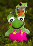 Frog vs. Frog Royalty Free Stock Photography