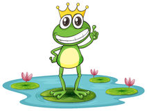 A frog and water Stock Image