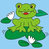 Frog and waterlily Stock Photos