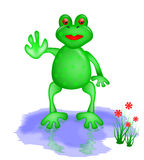 Frog Waving From a Rain Puddle Stock Images