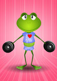 Frog weightlifting in the gym Royalty Free Stock Photography