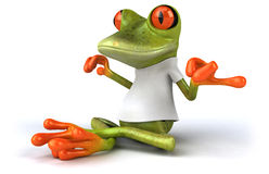 Frog with a white tshirt Royalty Free Stock Images