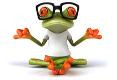 Frog with a white tshirt Royalty Free Stock Photo
