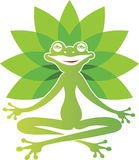 Frog yoga Royalty Free Stock Photography