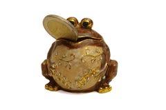 frog2 Arkivbild