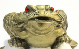 Frog with Feng Shui coin in mouth. Frogfrog with Feng Shui coin in mouth and red eyes with Feng Shui coin in mouth Stock Images