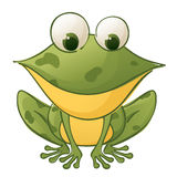 Froggie Stock Image