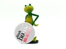 Froggy arbeitet vom Haus Stockbilder