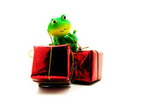 Froggy the gift deliverer Stock Photos