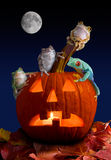 Froggy Halloween Stock Images