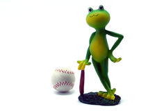 Froggy playing baseball. Frog miniature standing next to a base-ball ball isolated on white background Royalty Free Stock Image