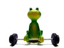 Froggys workout Royalty Free Stock Photo