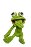 Froggy verde Imagenes de archivo
