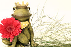 The Frogking. Ceramicfrogking with a gerbera and baby's breath Royalty Free Stock Photos