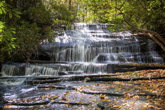 Frogman creek falls Stock Photos