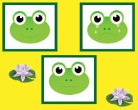 Frogs. Frog faces displaying different emotions, serious, happy, sad / crying, vector stock illustration