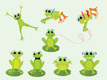 Frogs. Cute green frogs, illustration background Royalty Free Stock Photos