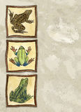 Frogs. Illustration of frogs on a painted canvas background. Plenty of space for copy Stock Photo