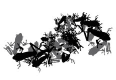 Frogs. Group of frog silhouettes on white Royalty Free Stock Image