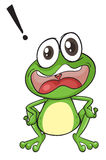 Frogs. Illustration of a green frog on a white background Royalty Free Stock Photo