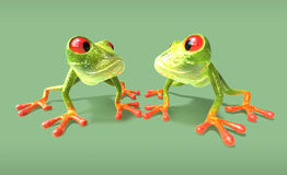 Frogs Royalty Free Stock Photo