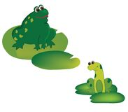 Frogs. Illustration of two frogs sitting on the leaves Royalty Free Stock Photo
