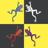 Frogs in color. Four brightly colored frogs on a contrast background. Feel a vibrancy of color Royalty Free Stock Image