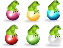 Frogs on colored balls Stock Photo