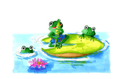 Frogs in leafs water lilies Stock Images