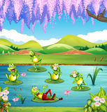 Frogs living in the pond. Illustration Stock Photo