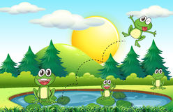 Frogs living by the pond. Illustration royalty free illustration